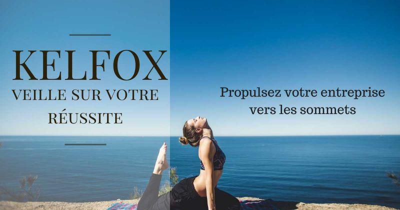 KelFox veille sur votre réussite